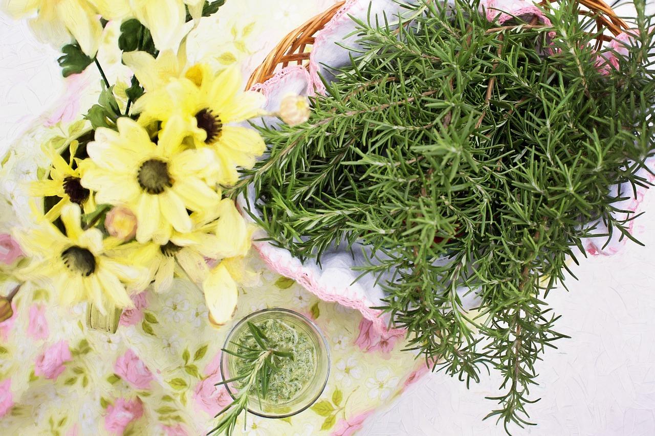 ローズマリーは使い方次第で料理以外にも使える?お茶にしたり消臭や虫よけ・掃除やお風呂にも向いている?