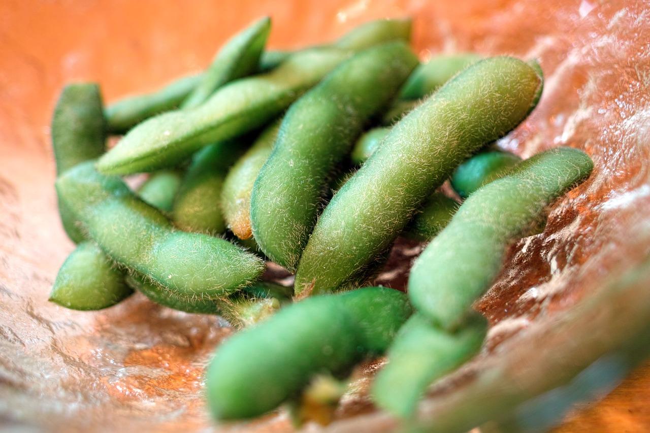 枝豆の保存方法は?茹でる前(生のまま)や冷凍庫・冷蔵庫・常温での期間も紹介!